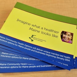 Community Health Options is on track to meet its budget.