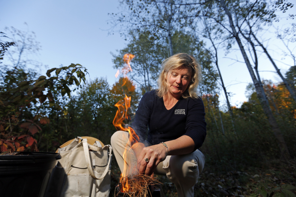 Erin MacGregor-Forbes ignites pine needles for her bee smoker. The smoke is used to calm the bees before she inspects the hives.