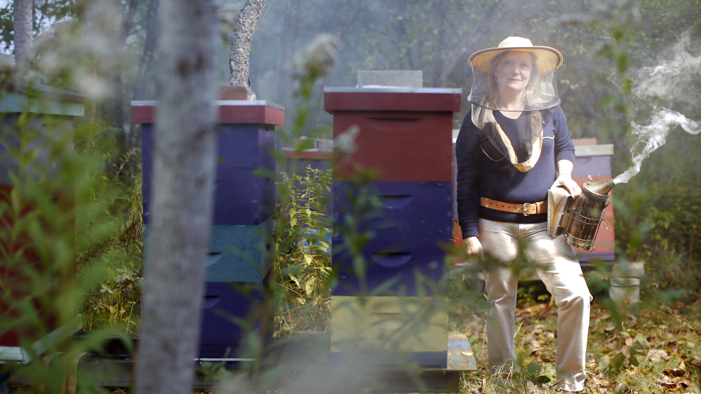 Erin MacGregor-Forbes normally harvests 2,000 to 3,000 pounds of honey in the fall. This year she got none. Photos by Ben McCanna/Staff Photographer