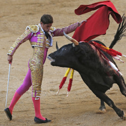 Spanish bullfighter Mario Palacios performs during a bullfight at the Las Ventas bullring in Madrid, Spain, on Oct. 9.