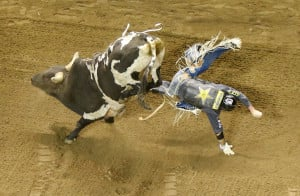 Sean Willingham gets thrown from a bull named Puppet Master during Friday night's Professional Bull Riders Tour competition at the Cross Insurance Arena.