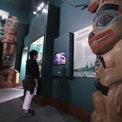 A visitor stands among totem poles as she watches a video as part of Hall of the North American Indian exhibit, at the Peabody Museum of Archaeology & Ethnology at Harvard University in Cambridge, Mass., Thursday, Oct. 13, 2016. The Peabody, one of the oldest and largest museums in the world focused on the study of societies and cultures, turns 150 years old this month.